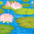 Lotus flowers in pond — Stock Vector