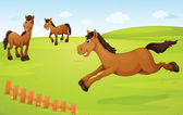 horses on meadow — Stock Vector