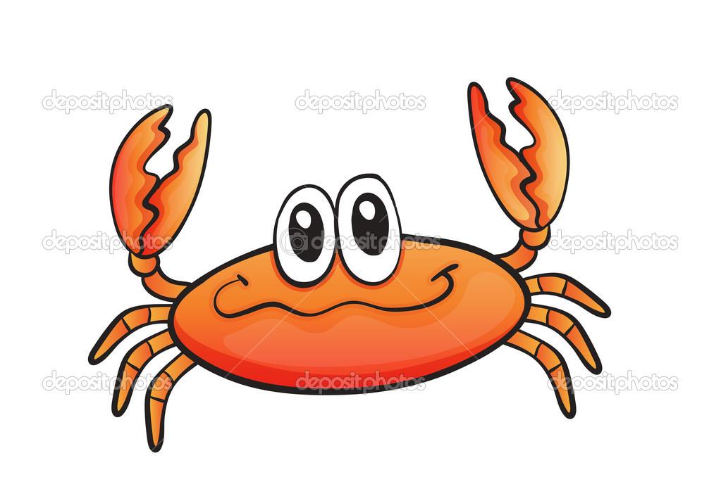 在白色背景上螃蟹的详细的说明— 矢量图片作者 interactimages
