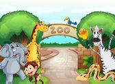 动物园和动物 — 图库矢量图片