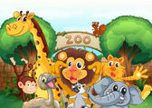 A zoo and the animals — Stock Vector