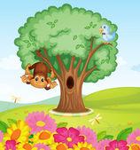 A monkey, a bird and a tree — Stock Vector