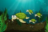 Schildpadden — Stockvector