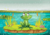 Een kikker en een water — Stockvector