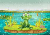 A frog and a water — Stockvector