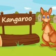 A kangaroo — Stock Vector