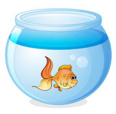 A fish and a bowl — Stock Vector
