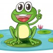 A frog and a water - Stock Vector