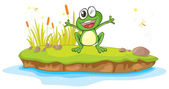 A frog and a water — Stock Vector