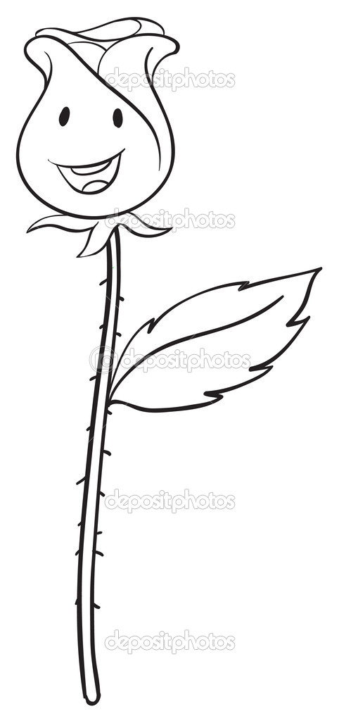 玫瑰花的简笔画步骤视频