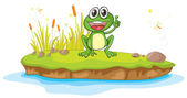 A frog and water — Stock Vector