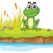 A frog and a water — Stock Vector #14743037