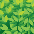 Leaves — Vector de stock #14745719