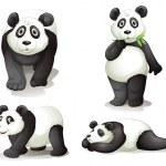 A panda — Stock Vector #14749839