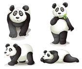 A panda — Stock Vector