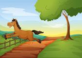 A horse — Stock Vector