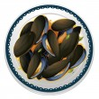 Mussels and a dish — Stock Vector