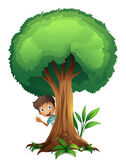 A boy and a tree — Stock Vector