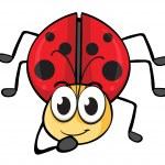 A ladybug — Stock Vector #16015449