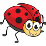 A ladybug — Stock Vector #16278761
