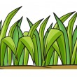 Grass — Stock Vector #17673797