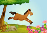 A jumping horse — Stock Vector