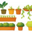 Various plants and pots — Stock Vector