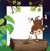 Ein Affe und eine weiße Tafel — Stockvektor