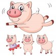 Stock Vector: Pigs