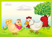 Chickens on a field — Stock Vector