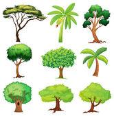 Varios árboles — Vector de stock
