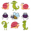 Various insects and animals — Stock Vector