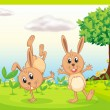 Dacing rabbits - 