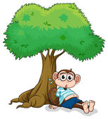 A monkey sitting under a tree — Stock Vector