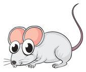 A mouse — Stock Vector