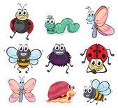 Vários insetos e animais — Vetorial Stock