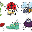 Various insects and animals - Imagen vectorial