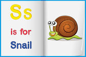 A picture of a snail in a book — Stock Vector