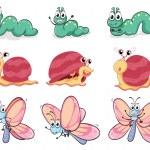 A caterpillar, butterfly and a snail — Stock Vector