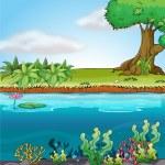 Land and aquatic environment — Stock Vector