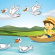 Ducks and a kid - Stock Vector