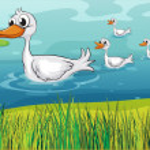 Little ducks following the mother duck — Stock Vector #18833115