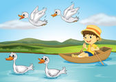 Ducks and a kid — Stock Vector