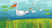 Little ducks following the mother duck — Stock Vector