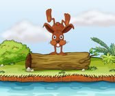 Rabbit on a log — Stock Vector