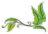 Green long leaves — Stock Vector