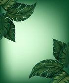 Grönska blad — Stockvektor