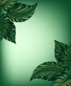 Yeşil yaprakları — Stok Vektör