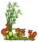 Happy squirrels — Stock Vector