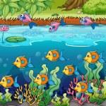 School of fish — Stock Vector #18872425